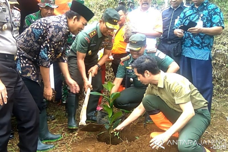Lereng Gunung Slamet Dihijaukan Ribuan Bibit Pohon