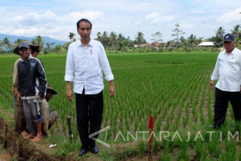 Jokowi minta kementerian jalankan strategi terintegrasi ekonomi desa