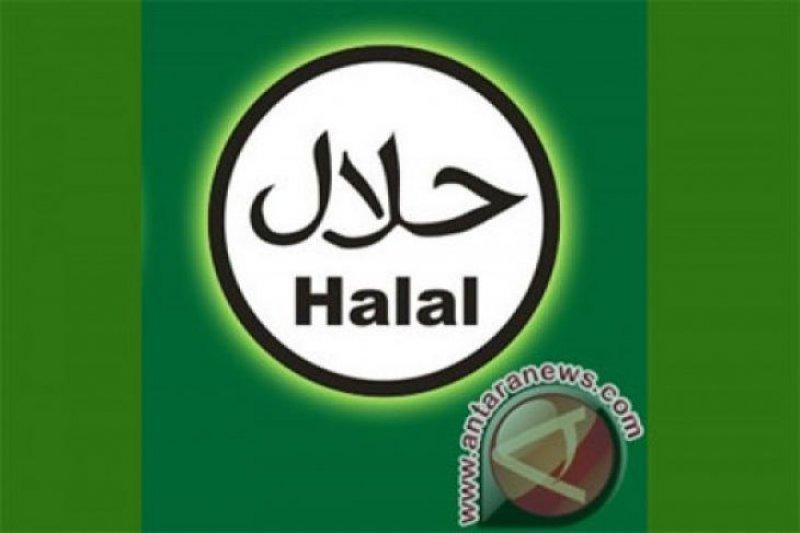 Halal watch nilai jaminan produk halal mendesak diberlakukan
