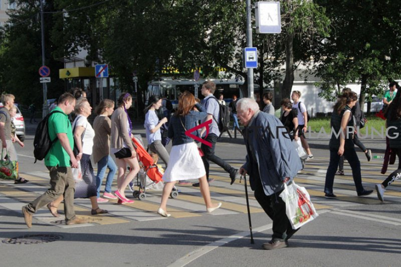 Festival Indonesia di Moskow akan digelar di taman seluas 16,5 Ha