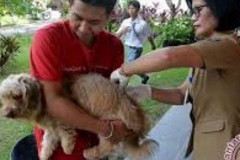 Distanak Pekanbaru Vaksin Ribuan Hewan Penular Rabies
