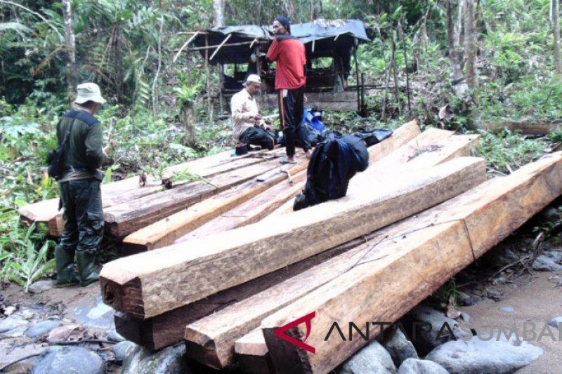 TNKS sita kayu tak bertuan, diduga hasil pembalakan liar