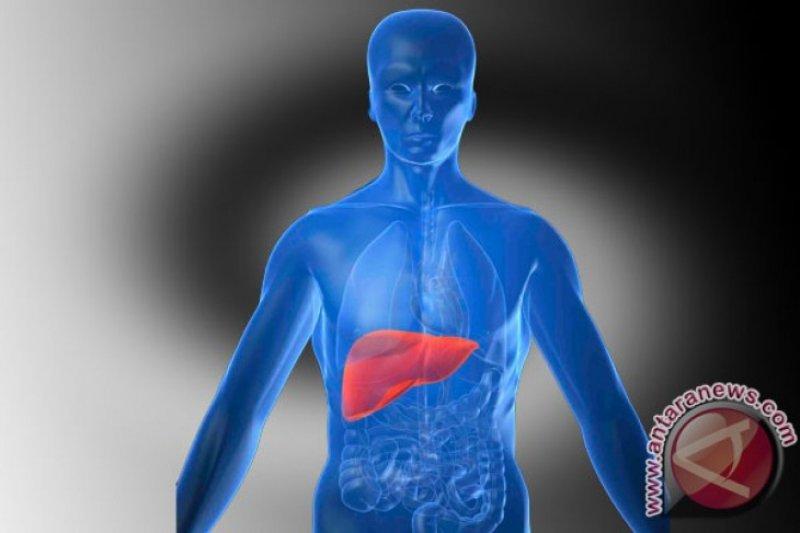 Fakta dan mitos terkait hepatitis