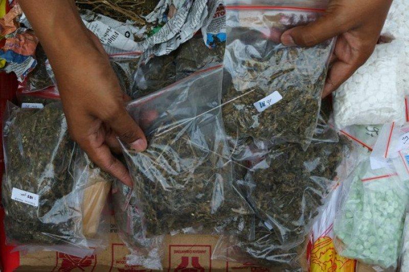 Petugas sita 500 bungkus daun ganja kering asal Aceh