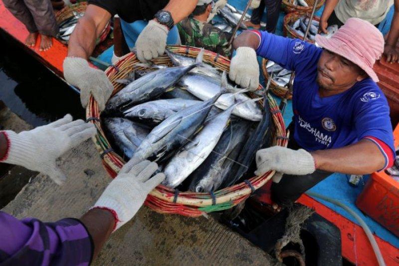 DIY rencanakan bangun unit pengolahan ikan berstandar ekspor