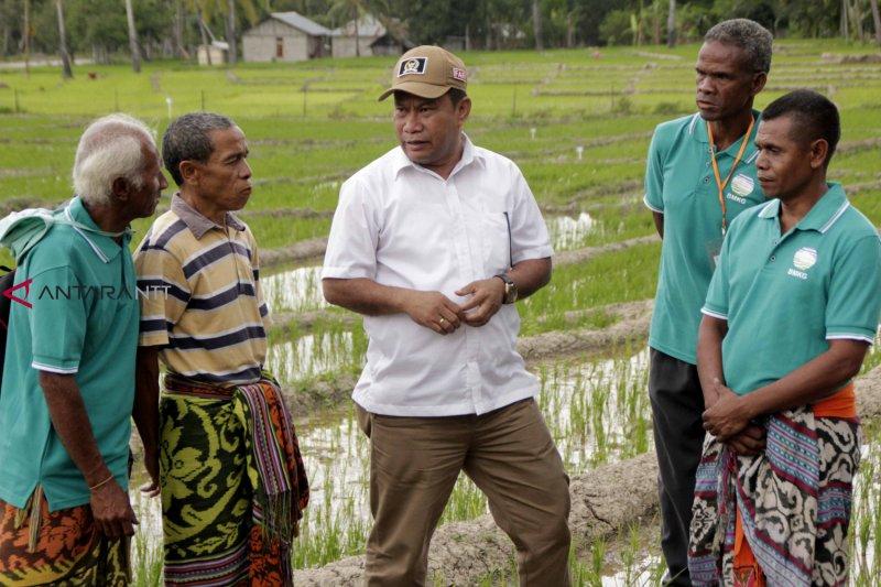 DPR dukung pembukaan rute penyeberangan internasional Maritaing-Dili