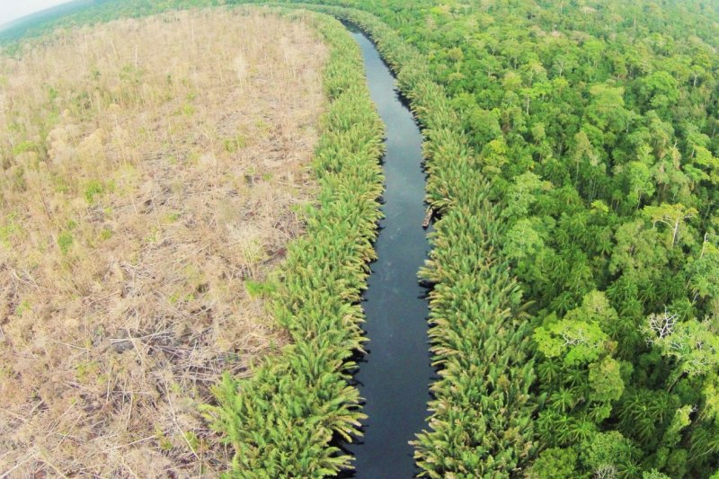 Norway offers assistance for landscape program of South Sumatra