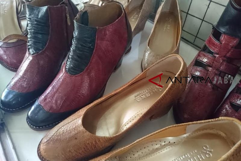 Pemuda Bandung ubah kulit ceker jadi sepatu nilai jual tinggi