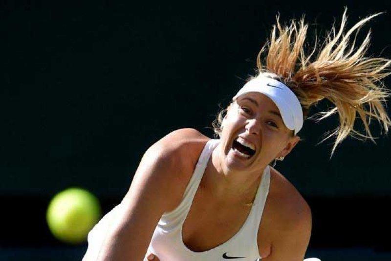 Cedera bahu, Sharapova mundur dari Italia Open