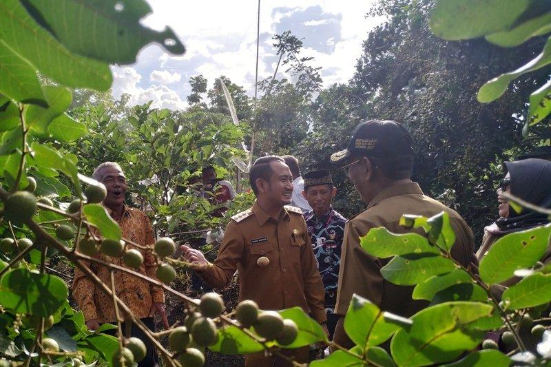 Palangka Raya lirik pengembangan sektor agro wisata