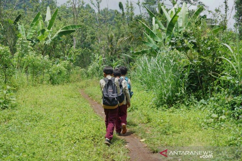 Bocah Selagolong lintasi hutan belantara demi sekolah