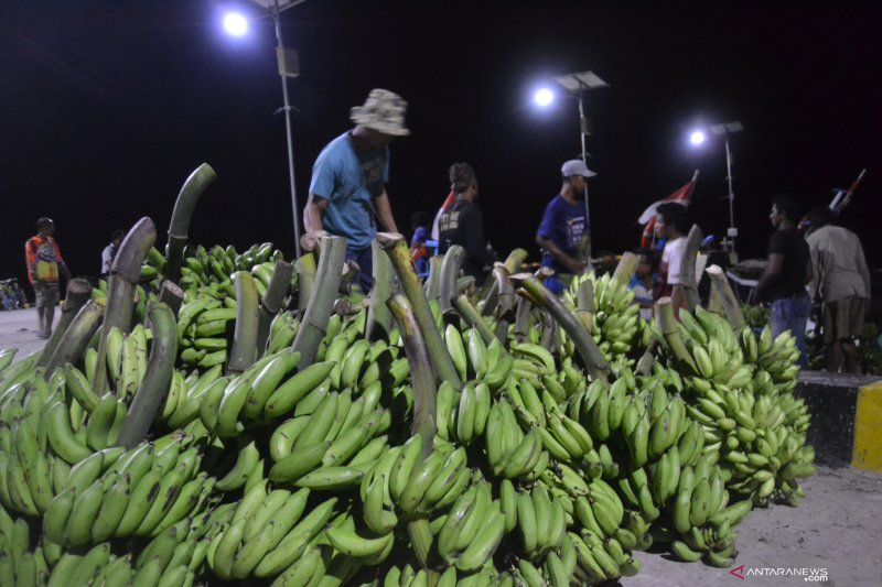 Lampung ekspor pisang dan nenas dalam kemasan ke China