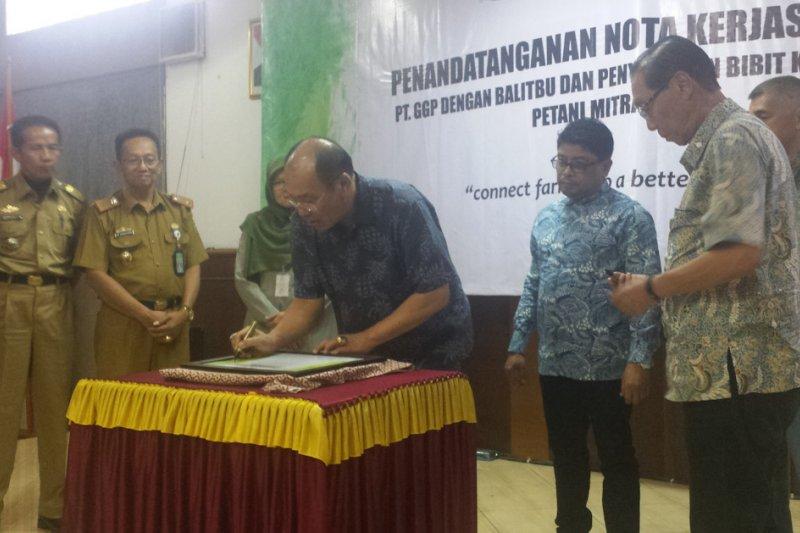 Ribuan Benih Buah dari Balitbu Akan Disebarluaskan ke Tiga Kabupaten
