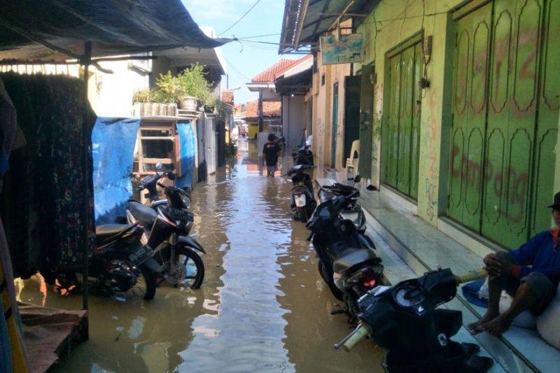 Air laut pasang memperparah banjir di Cirebon