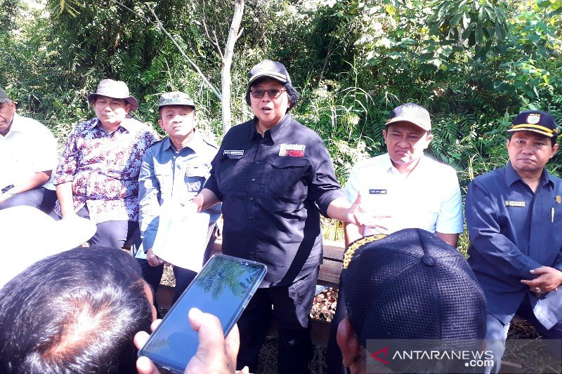 Hutan rakyat di Pulpis ditarget jadi percontohan internasional