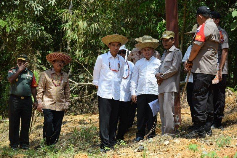 """Saya ke Kalteng hanya untuk menemukan """"feeling"""", kata Presiden Jokowi"""
