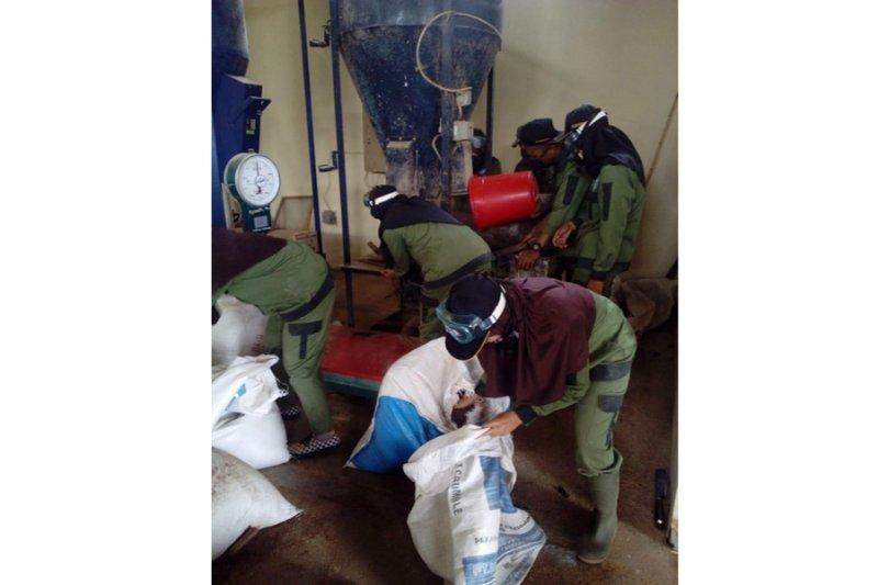 Mahasiswa Polbangtan YoMa produksi 1,8 ton pakan ternak/hari