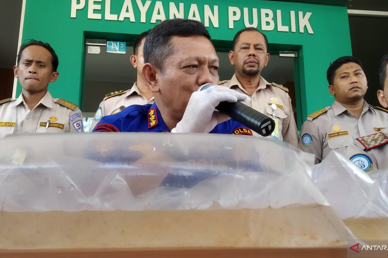 Polda Riau gagalkan penyelundupan benih lobster senilai Rp11,5 miliar
