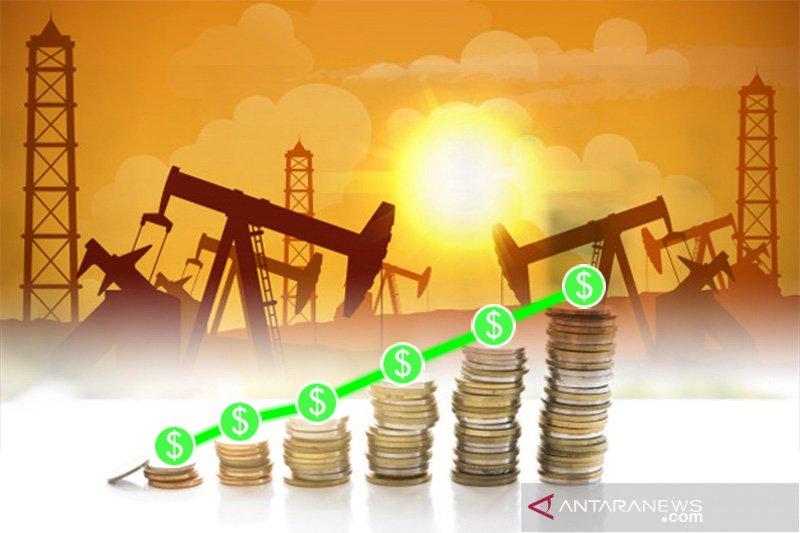 Harga minyak naik hampir tiga persen