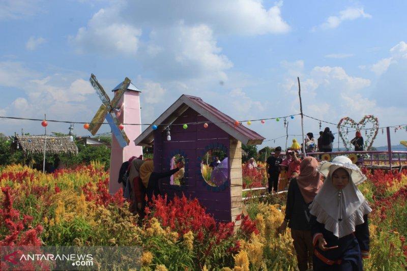 Taman bunga manjakan wisatawan di Musi Rawas