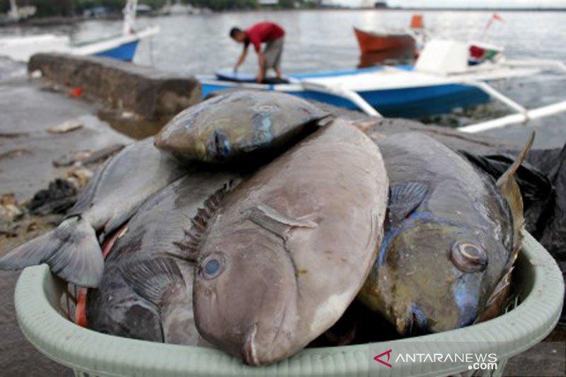 Nelayan kembali melaut pascaLebaran