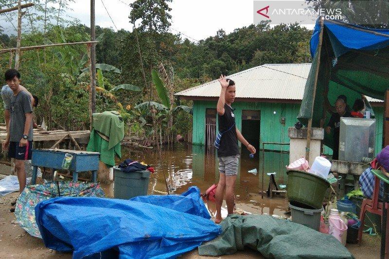 Korban banjir di Konawe dirikan tenda darurat