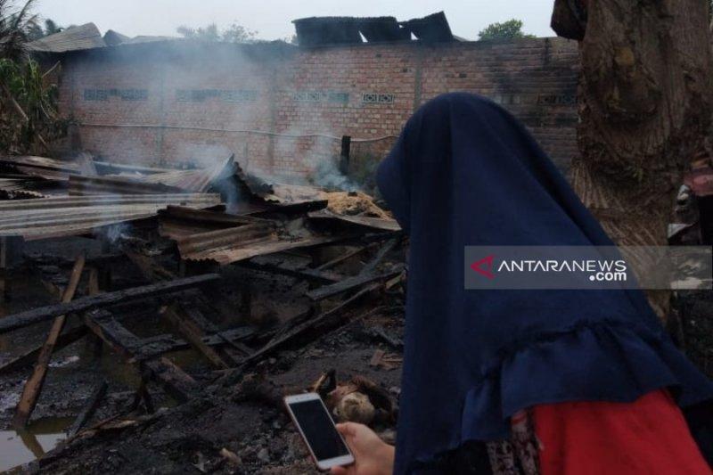 Belasan ekor kambing ikut terbakar saat kebakaran rumah kontrakan