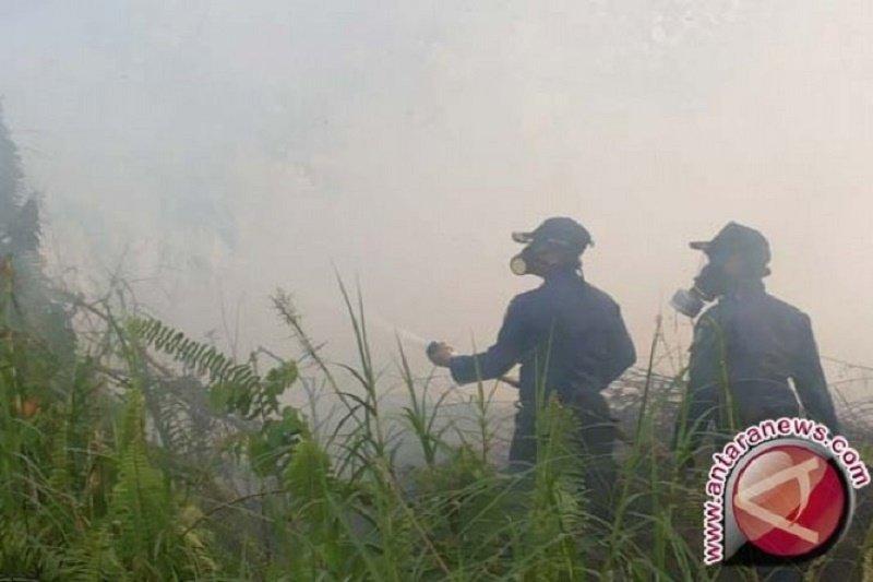 Waspadai kebakaran lahan kosong selama kemarau