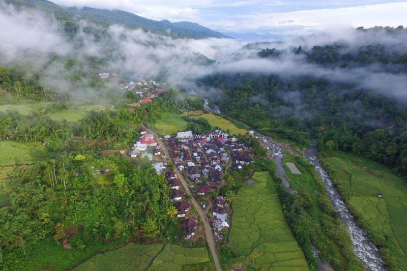 Hutan adat Rantau Kermas Kabupaten Merangin raih penghargaan Kalpataru