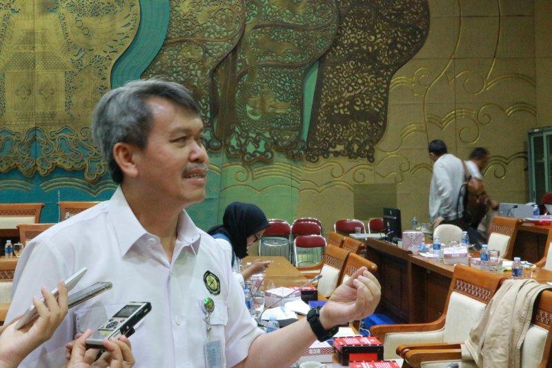 Kementerian ESDM : Freeport sudah menyewa lahan smelter lima tahun