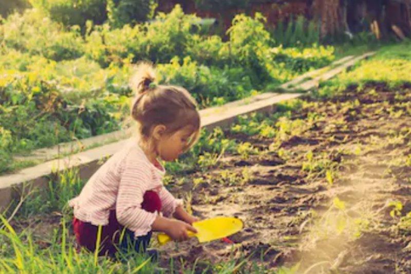 Hal sederhana untuk ajarkan anak cinta lingkungan