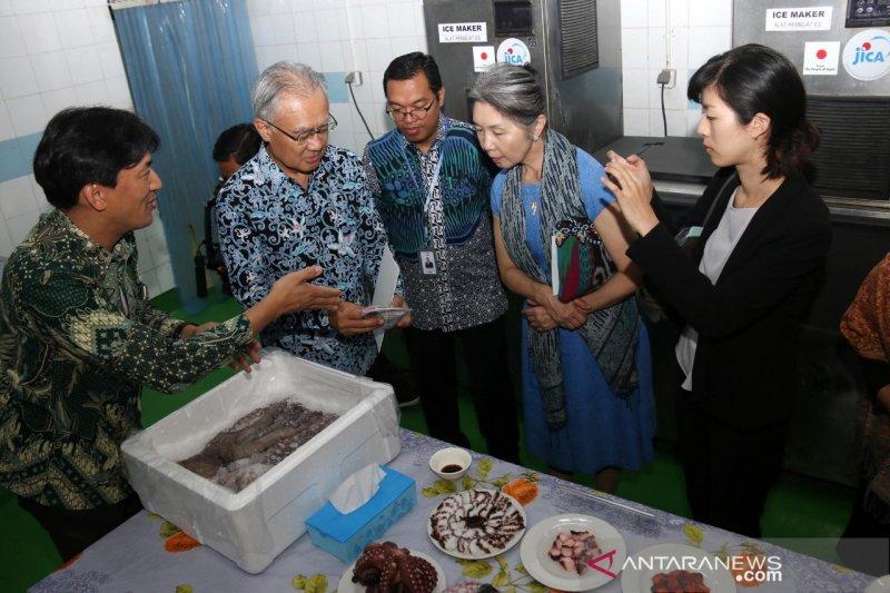 Dubes Jepang tinjau produksi pengolahan PT Perikanan Nusantara di Makassar