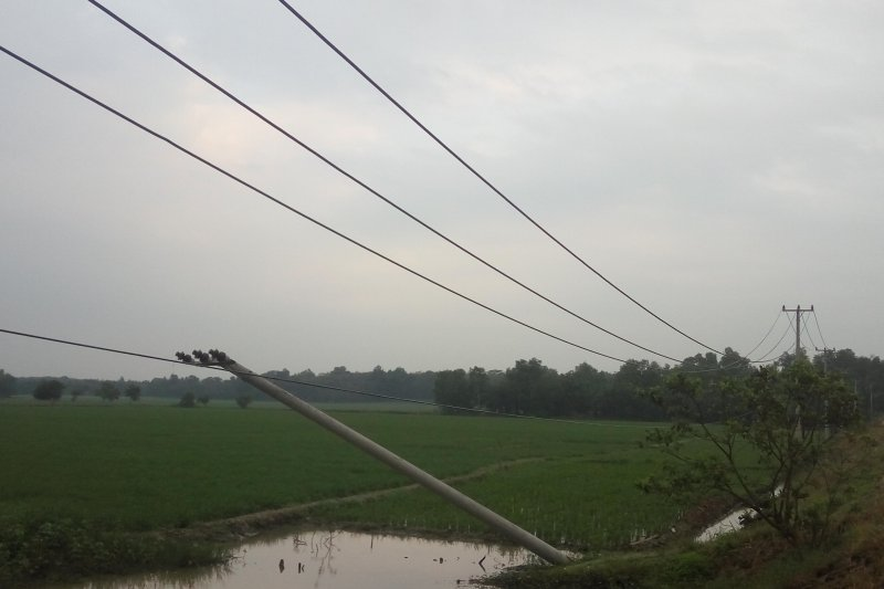 Tiang listrik roboh di Lampung Timur