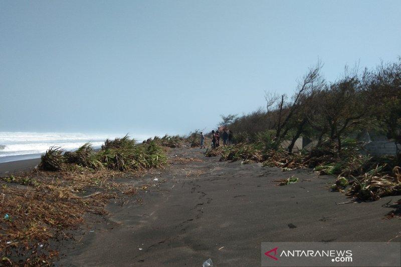 BPBD Bantul: abrasi pantai selatan cukup tinggi