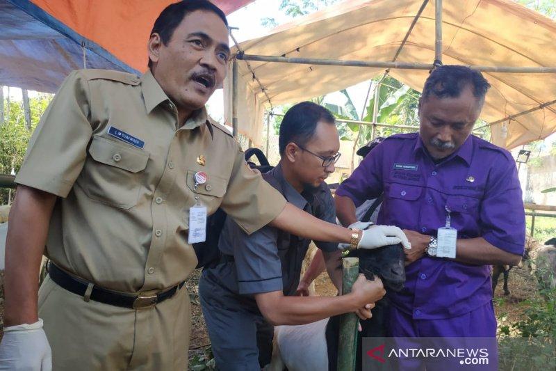 Jateng intensifkan pemeriksaan hewan kurban jelang Idul Adha