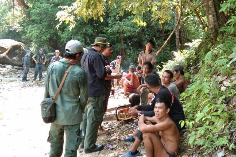 KLHK tangkap 17 pembalak liar di hutan lindung Gunung Bentarang