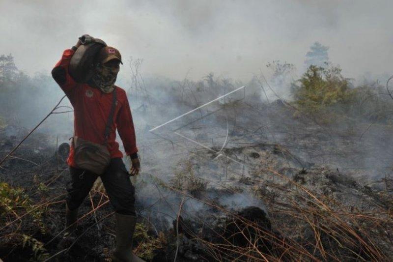 BMKG sebut titik panas melonjak di Sumatera menjadi 192