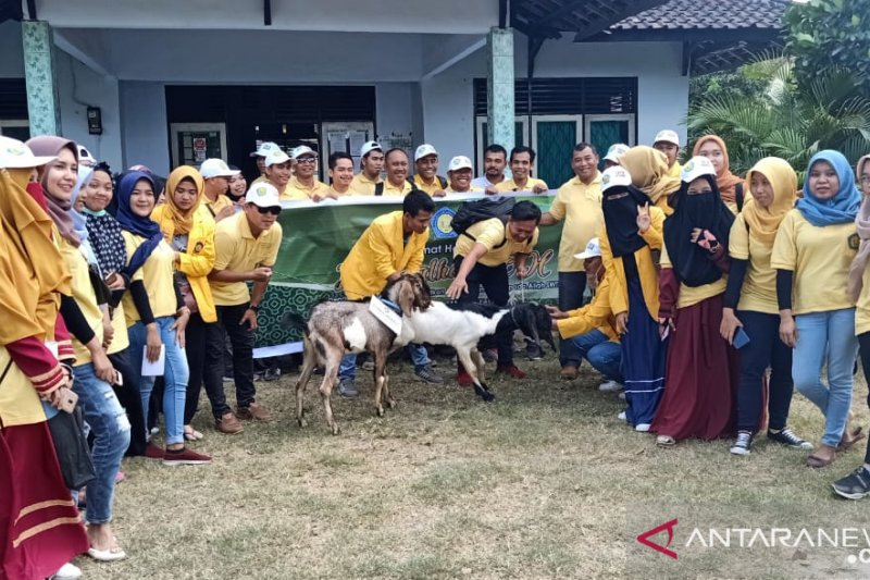 STIA Mataram menyalurkan hewan kurban ke Desa Senteluk