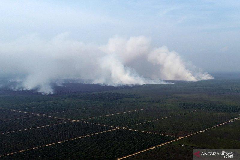 BMKG deteksi 404 titik panas merubung di wilayah Kalimantan Barat