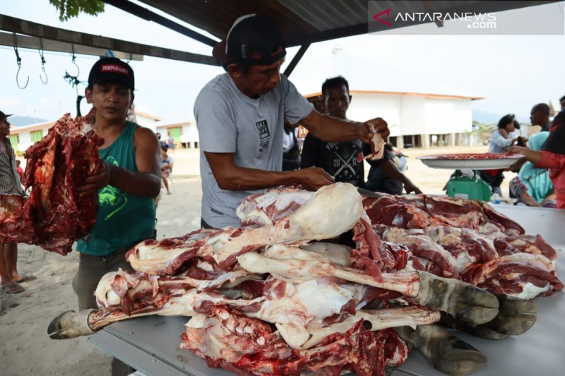 ACT bagikan 700 paket kurban kepada pengungsi di Palu