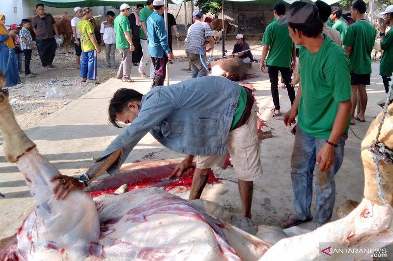 Masjid Agung Karawang bagikan 2.300 lebih daging kurban