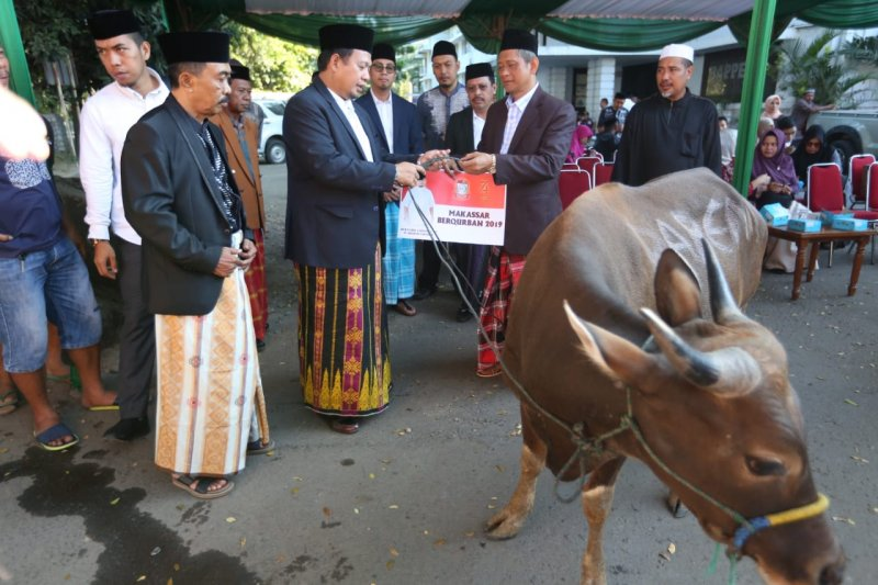 Pemkot Makassar  sembelih sembilan ekor hewan kurban