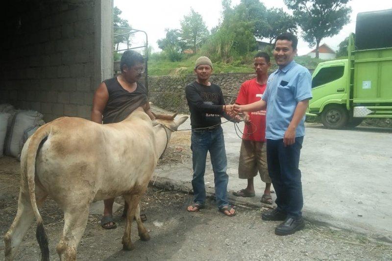 Aqua Solok sumbangkan hewan kurban ke Nagari Batang Barus