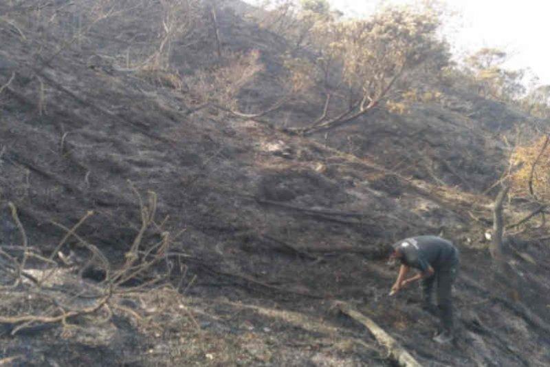 BPBD Kuningan: Kebakaran puncak Gunung Ciremai sudah padam