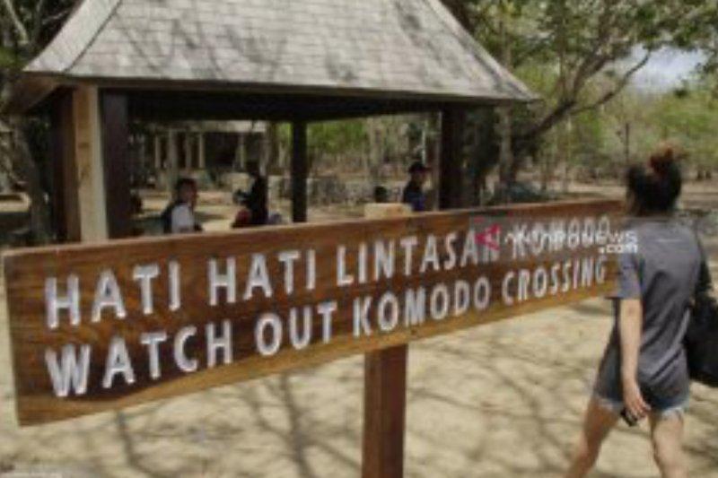 Operator tur tak jual paket wisata Pulau Komodo untuk 2020