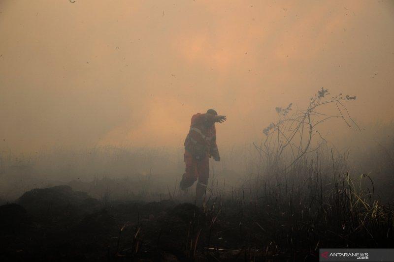 Asap karhutla Sumsel cemari udara Riau dan Jambi