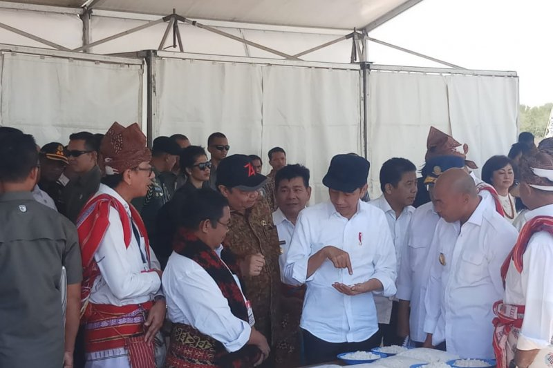 Presiden Jokowi tinjau tambak di desa Nunkurus