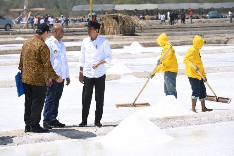 Presiden Jokowi ingin memastikan kekurangan garam mulai diatasi