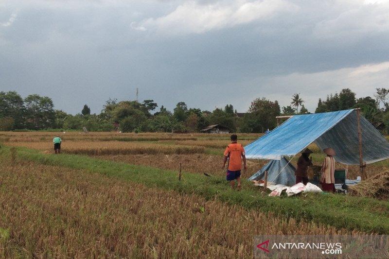 Pemkab Bantul menganjurkan petani persiapkan lahan hadapi masa tanam