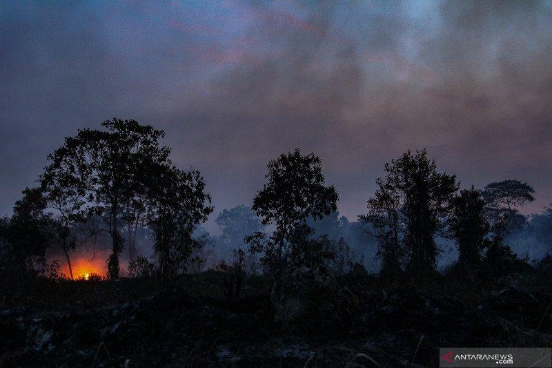 358 titik panas merubung di  pulau Sumatera, Riau mendominasi